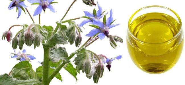 borazina-ulje