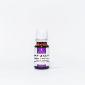 AROMARA – Eukaliptus radiata